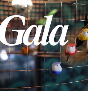 L'Appart' Gala, une nouvelle vitrine pour les marques